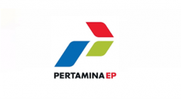 Pertamina EP project
